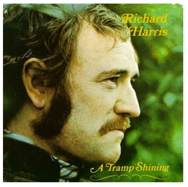 A Tramp Shining by Richard Harris